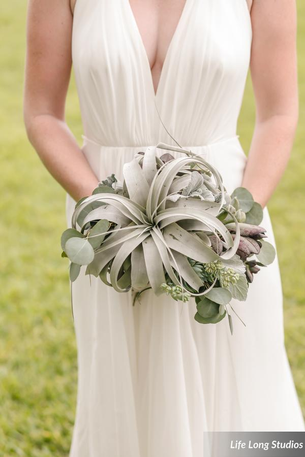 winsor event studio airplant bouquet