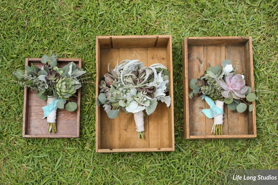 winsor event studio airplant succulent bouquet