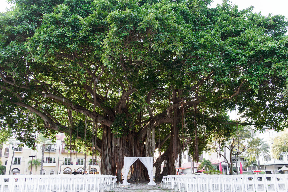 winsor event studio banyan tree wedding straub park