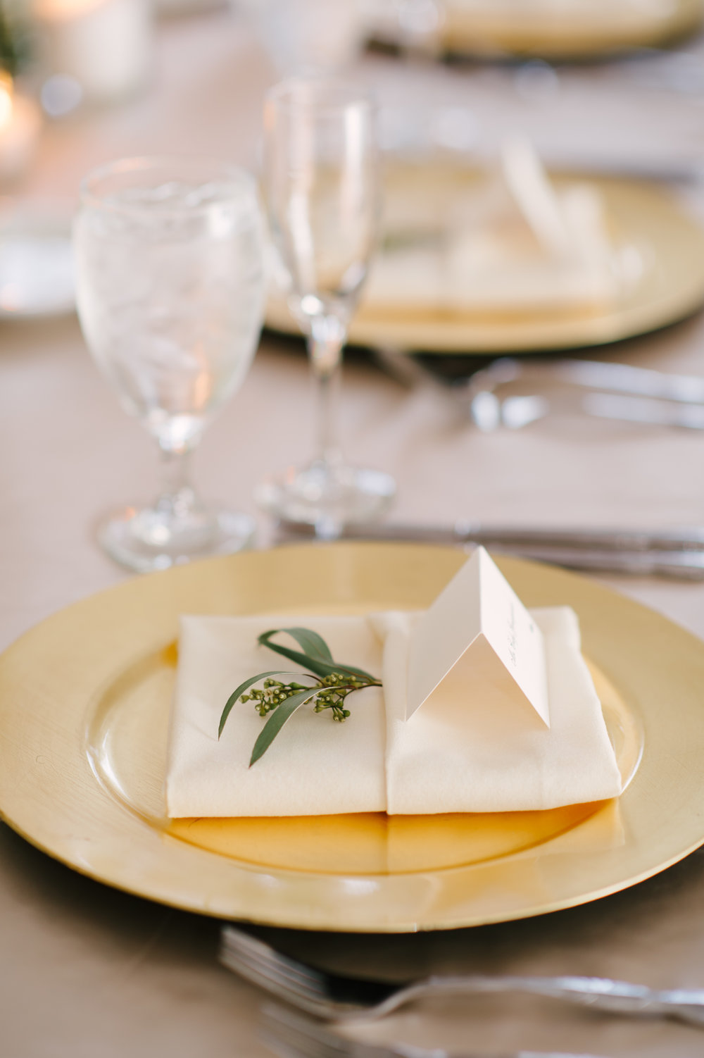 Seeded eucalyptus was set with tent style place cards on gold chargers at each place setting.