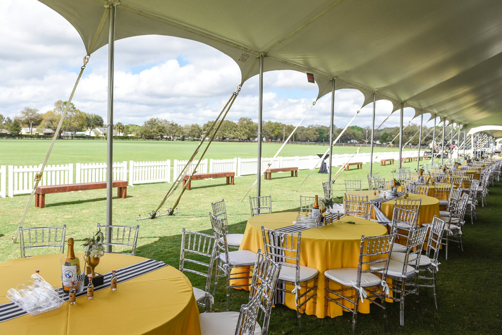 CharityPoloClassic2017-event-9.jpg