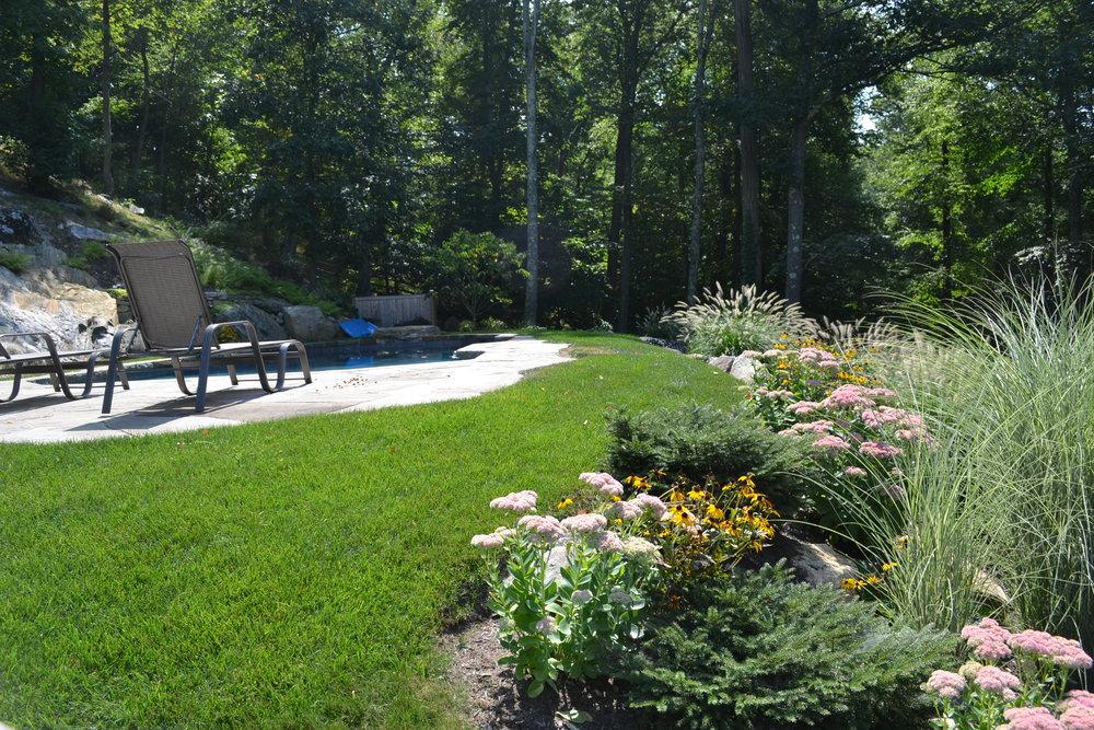 Kaplan Pool Garden.jpg