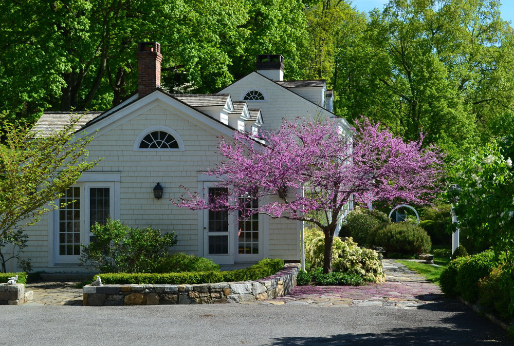 1_Entrance with Redbud cropped.jpg