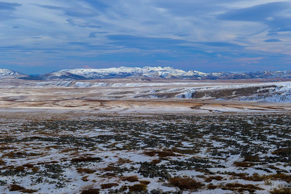 arctic_snow.jpg