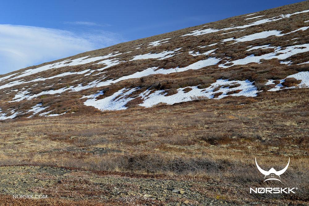 arctic_shelter01.jpg