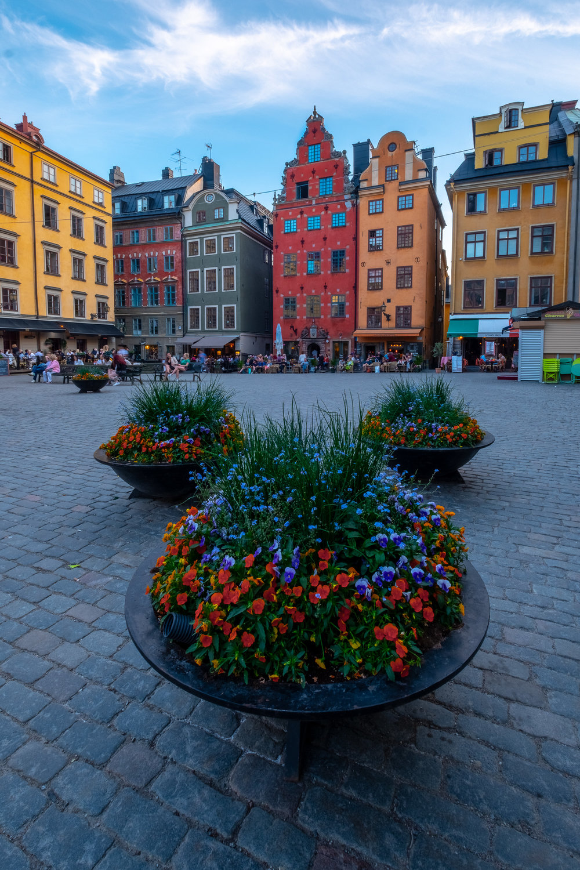 Scandinavia-11.jpg