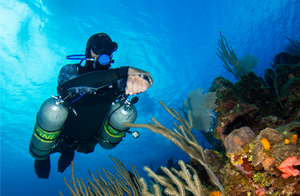 a sidemount diver in the Xdeep 2.0 rec harness is swimming along side a beautiful reef, he is diving with coconut tree divers in roatan.