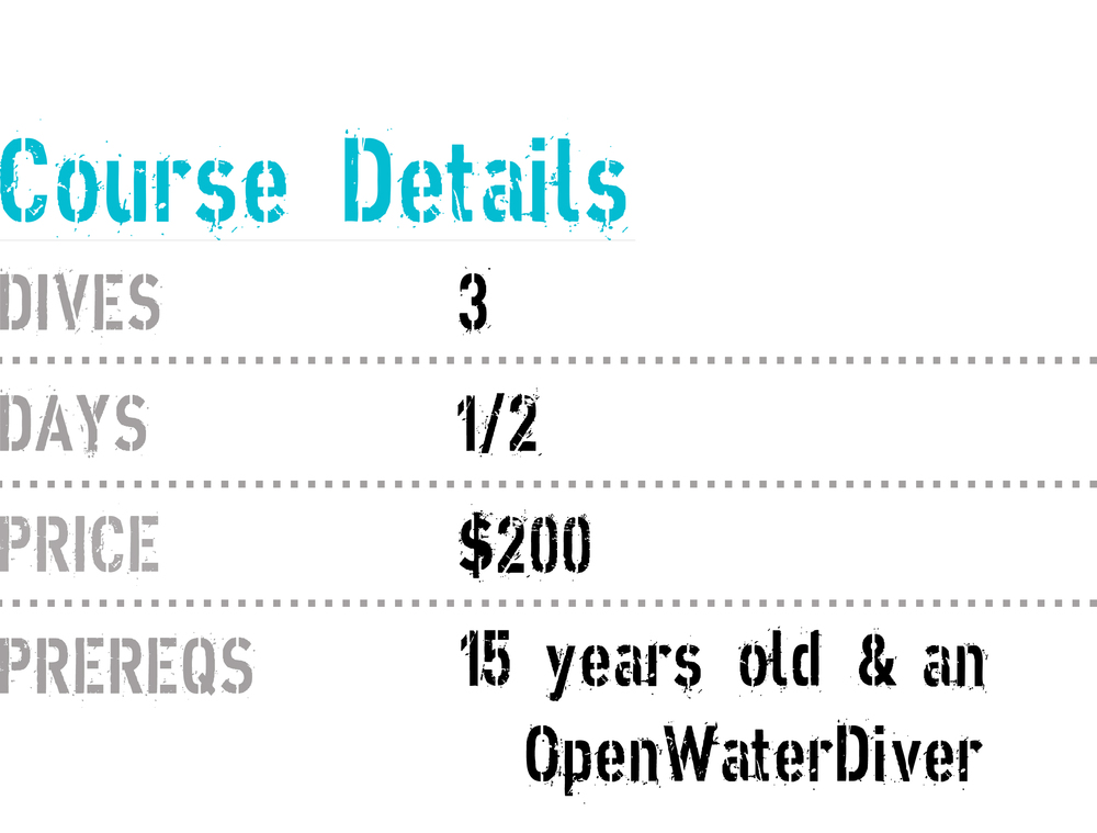 a price list for TDI advanced bouyancy class with coconut tree divers.