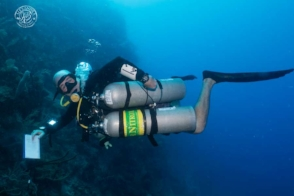 a technical sidemount diver working on his wetnotes while diving the Xdeep 2.0 tec sdiemount configuration that was designed by coconut tree divers.