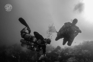 two sidemount divers decompressing along the wall in roatan, a coconut tree diver photographer assisted and took the photo