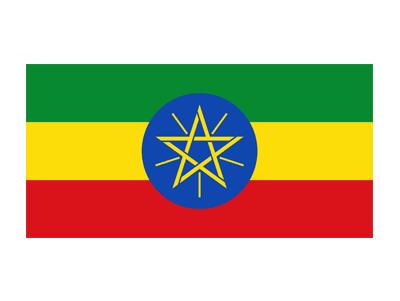 Hailemariam Desalegn, Prime Minister of Ethiopia