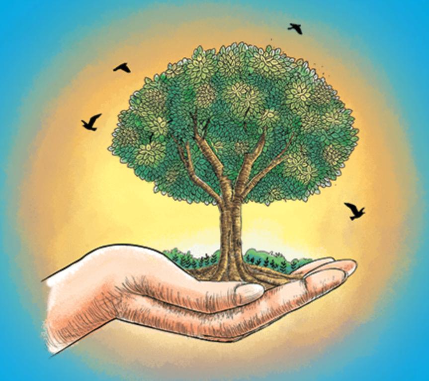 World Sustainable Development Summit 2019 Carbon Pricing Leadership
