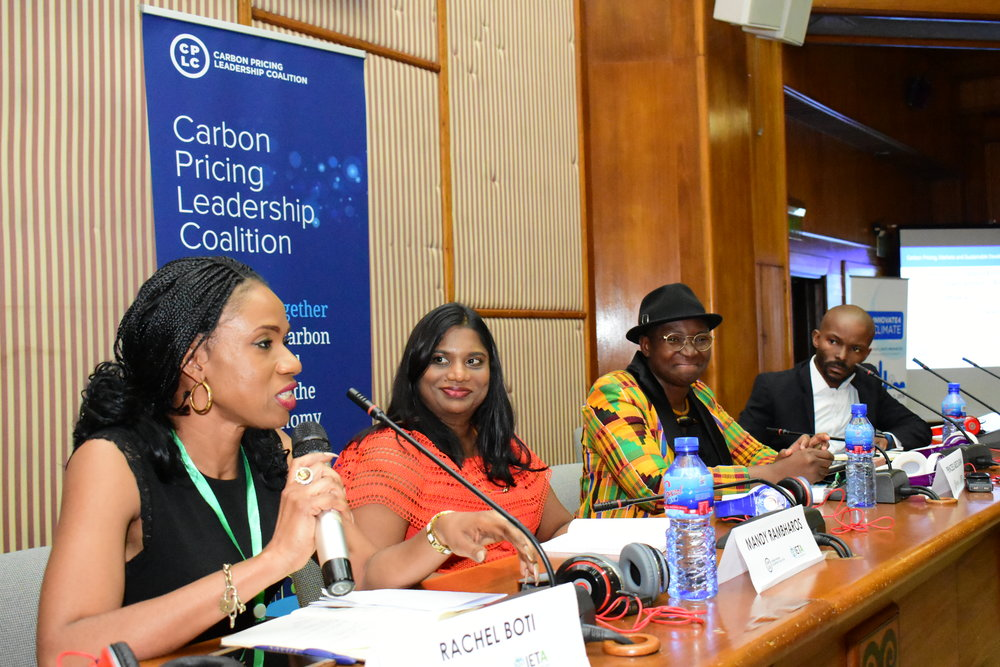 Rachel Boti, Ministry of Environment and Sustainable Development, Côte d'Ivoire