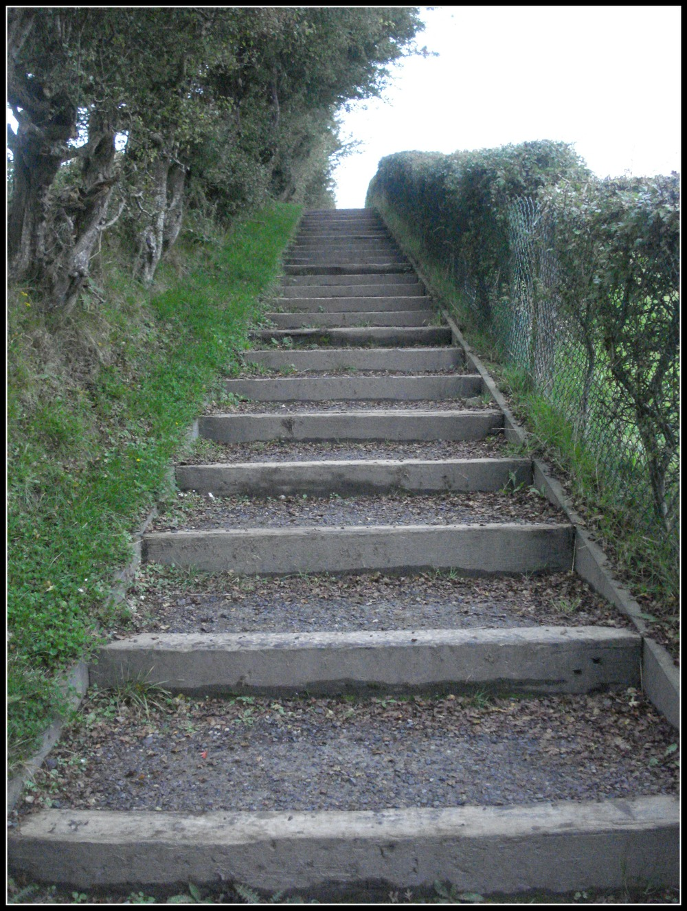 Loughcrew Cairns - the stairs.jpg