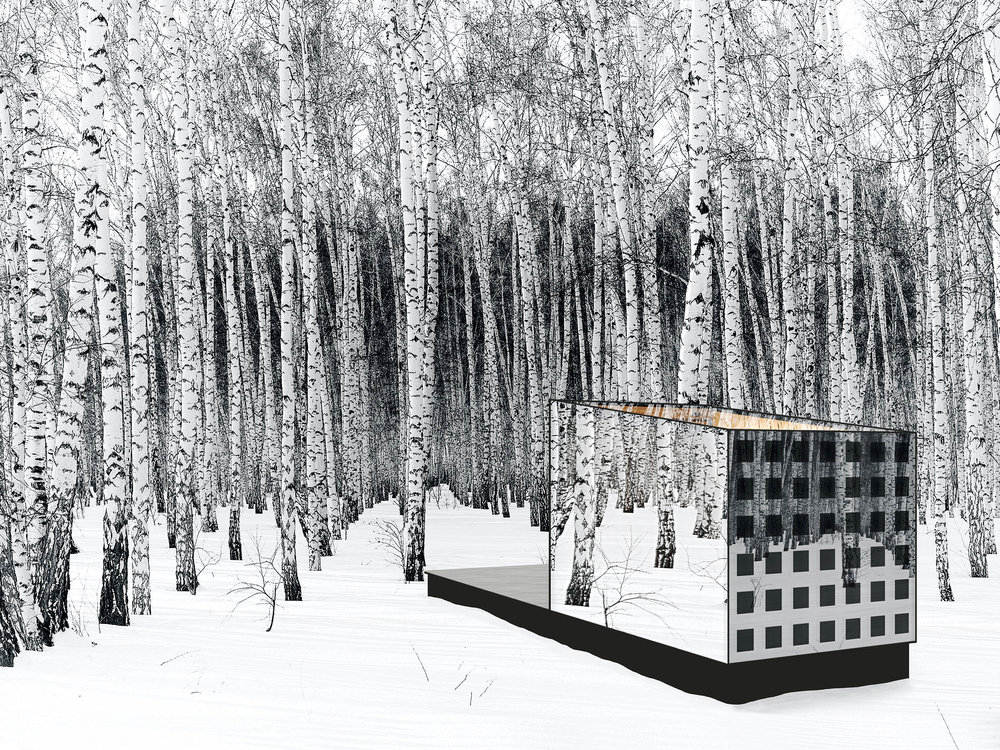 - Imagine it is -25°F on a winter morning, yet no heating is required. Disappear Retreat integrates the components for triple-zero performance into an almost invisible, ethereal state. The design is light, transparent, and seamlessly connected to the surroundings, dissolving into the landscape where the building form is compact and the glass takes on the identity of the site in its reflections (transparent ultraviolet color prevents animal collision). A spotted pattern of thin-film PV in the south glass wall generates all the energy needs from the sun and camouflages the building amongst the trees like a quiet forest animal. Weathered wood softens the design and blends with the landscape. As evening approaches the clear glass roof emits a warm, welcoming glow.