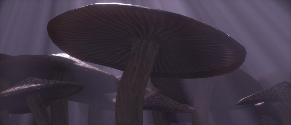 Mushroom2a.png