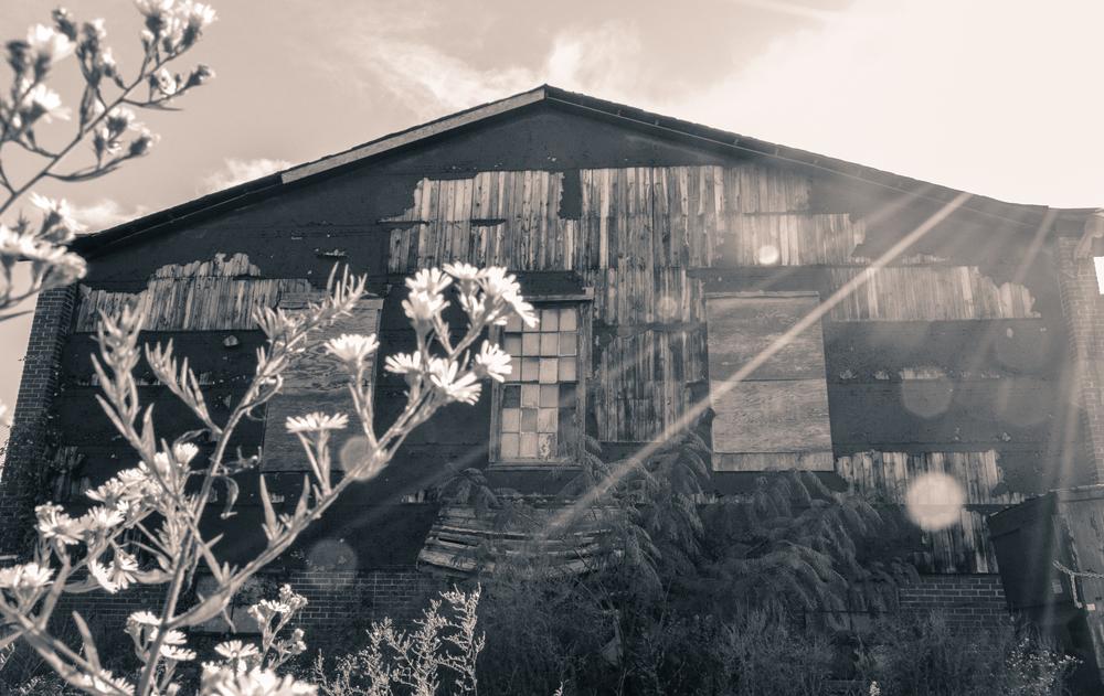 Chattanooga 2014-1750-2.jpg