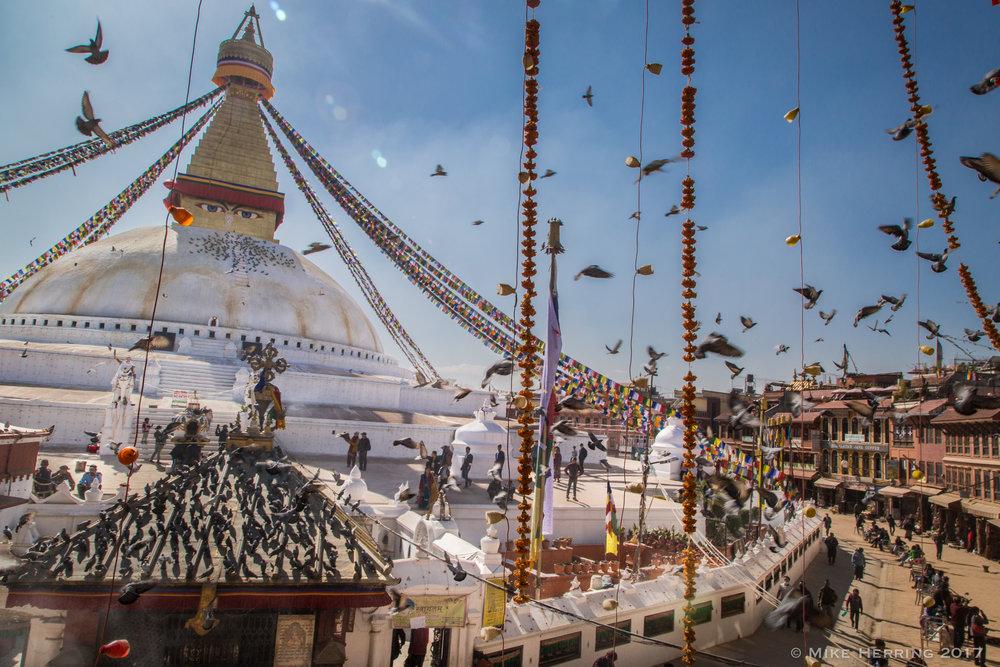 Nepal-6974.jpg