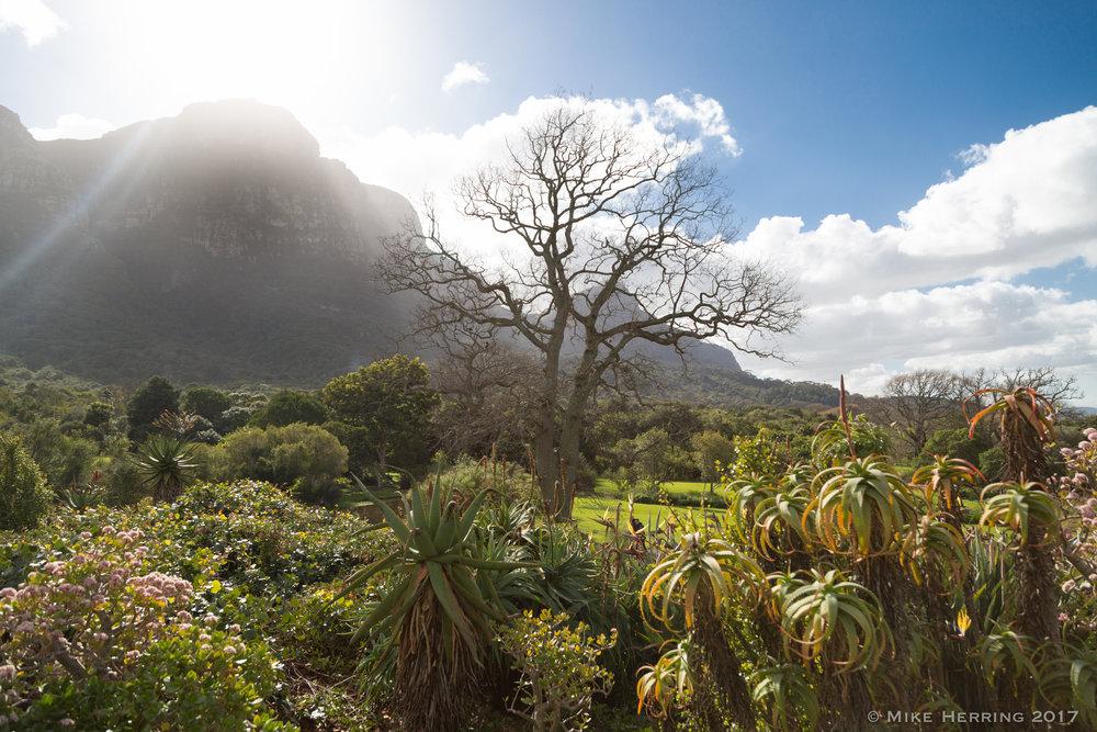 South Africa-7926.jpg