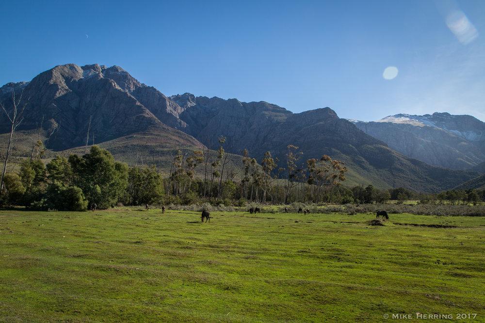 South Africa-8359.jpg