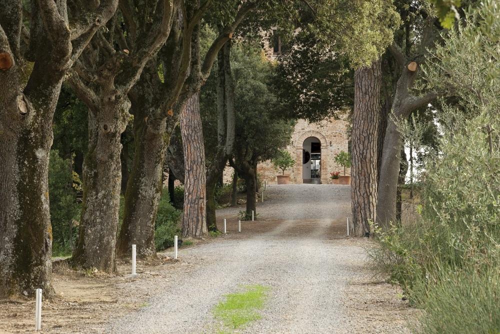 ITALY-Tuscany-Poggio Piglia Entry Driveway.jpg