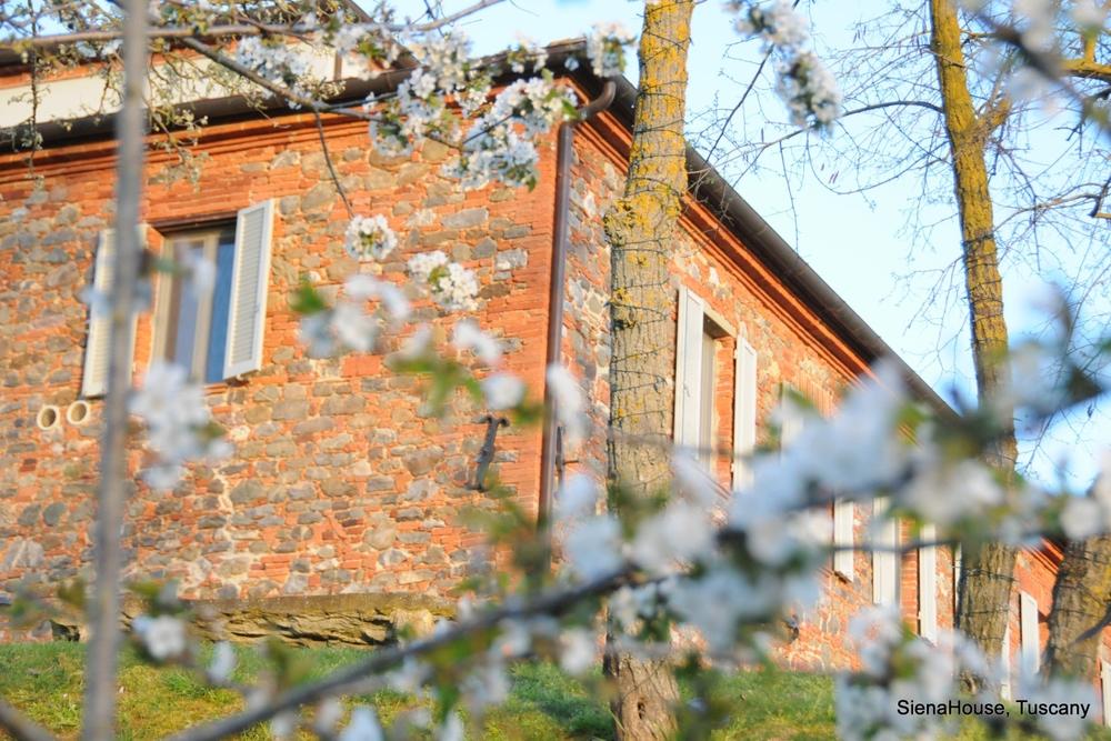ITALY-Tuscany-Siena-House-exterior.jpg