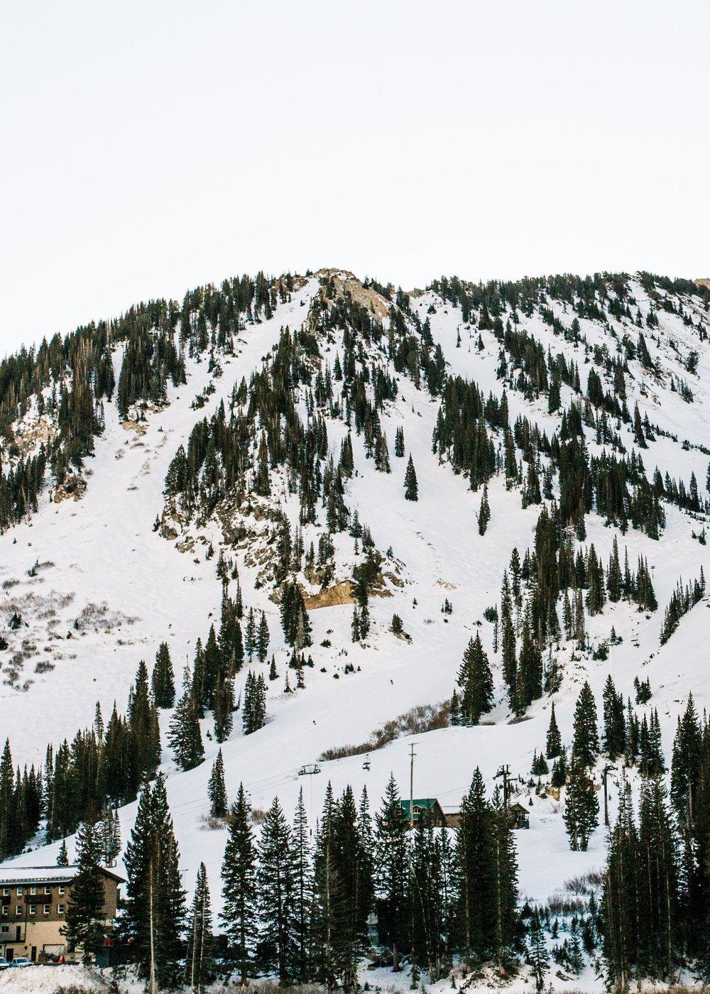 alta_mountain-1.jpg