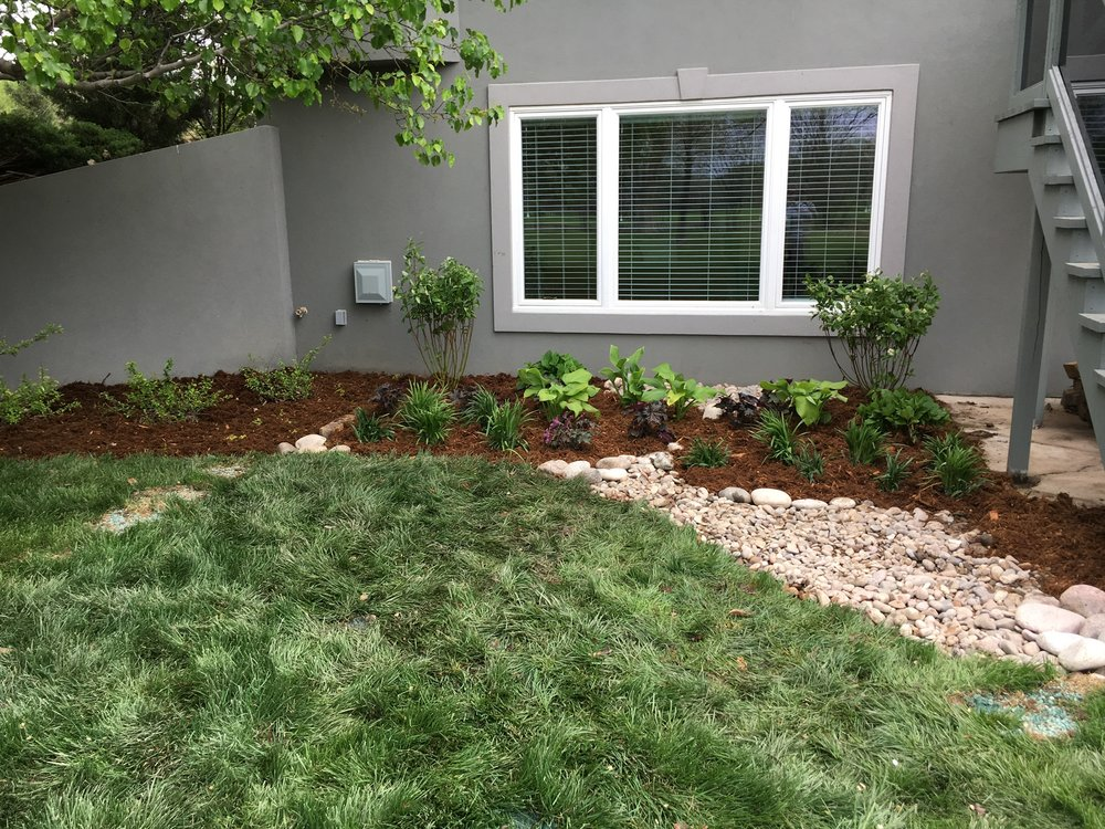 Renovated garden bed full of native plants and river rock.