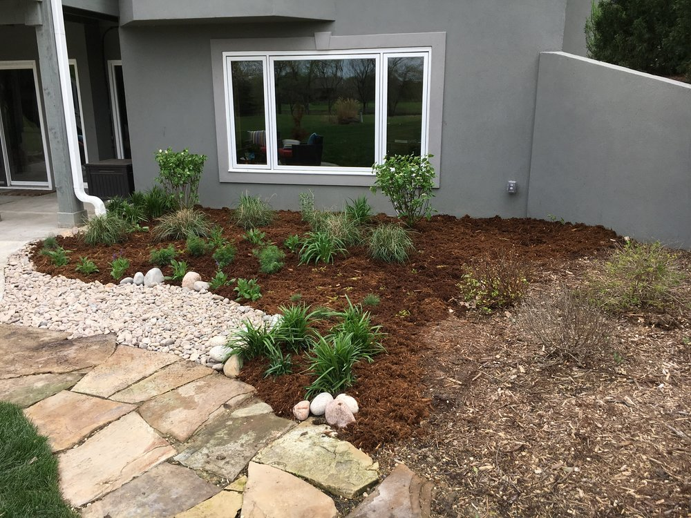 An empty plot at the back of this property becomes a textured array of grasses, lillies, coneflowers, and more. This bed will change colors and textures as the months go by.