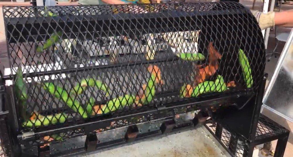 roasting peppers.jpg