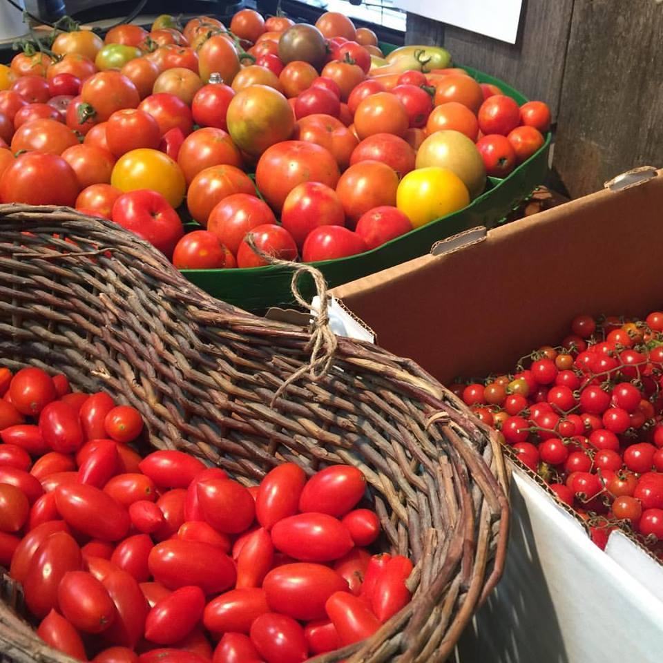shop tomatoes.jpg