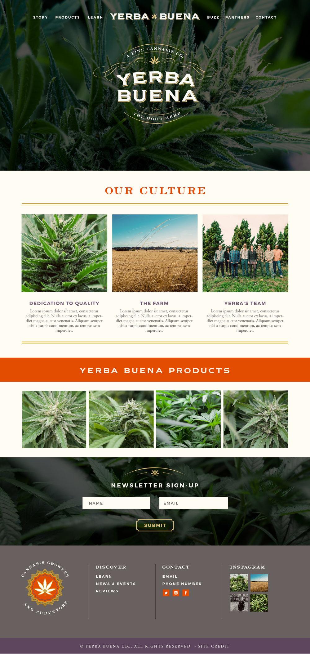 YERBA.Homepage.6.jpg