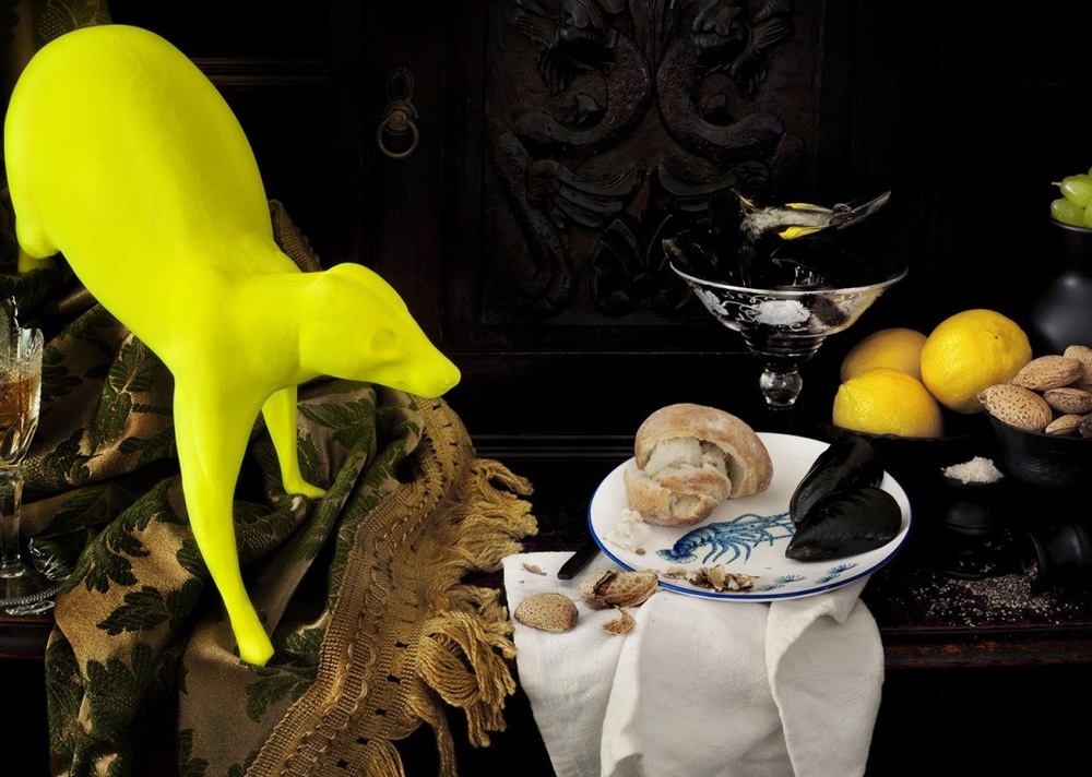 Image:  CJ Taylor , Still life with possum, mussels and New Holland Honeyeater, 2011, Pigment Print mounted to Acrylic Glass, edition of 5, 70 x 65 cm, courtesy of the artist and THIS IS NO FANTASY, Melbourne.