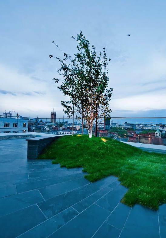 Design & image: Urban Roof Gardens