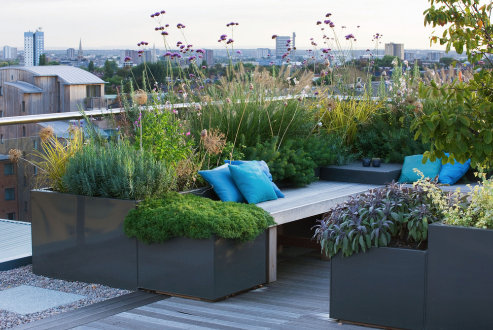 Even small rooftops can be converted into lush outdoor retreats.  Image via Charlotte Rowe.