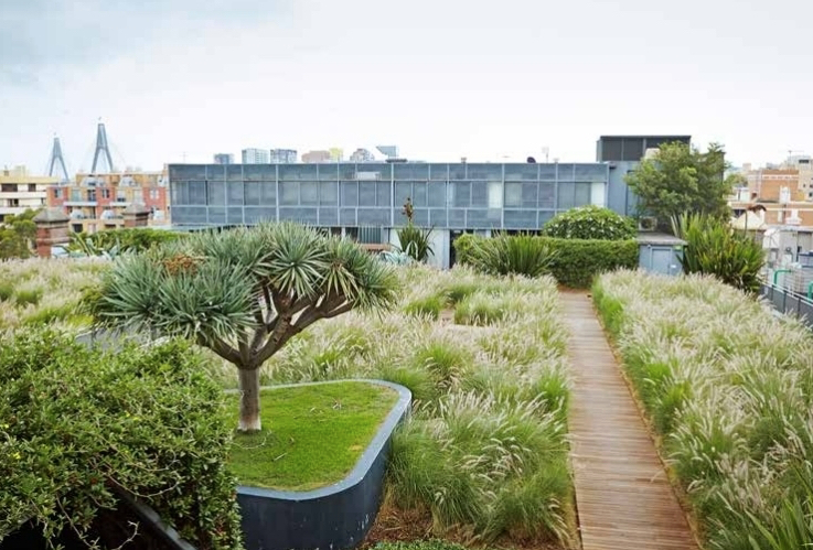 This rooftop garden at Sydney's M Central sits atop a historical woolstore building. Image via Green Villages.