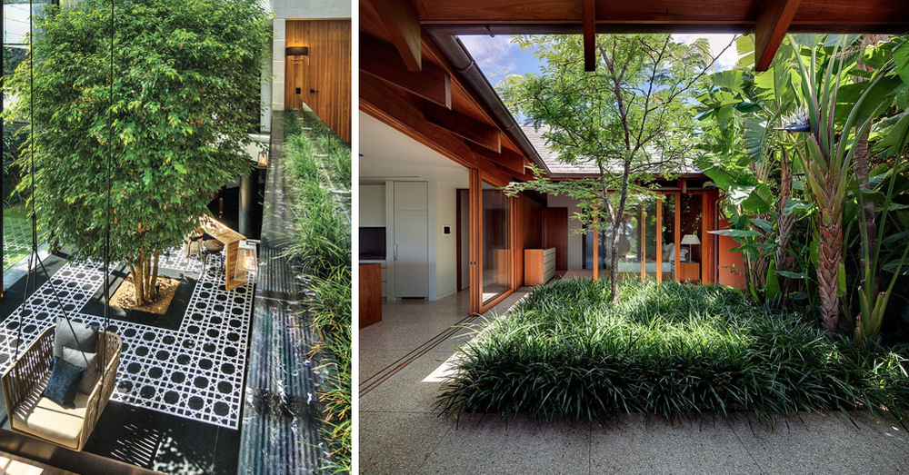 When outdoor space is limited, look indoors for ways to create a garden area in your home. Images via Architectural Digest Mexico and William Dangar.