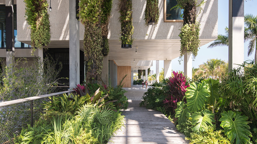 Biophilic design creates a connection between people, the built environment and nature. Image via TheCoolist.