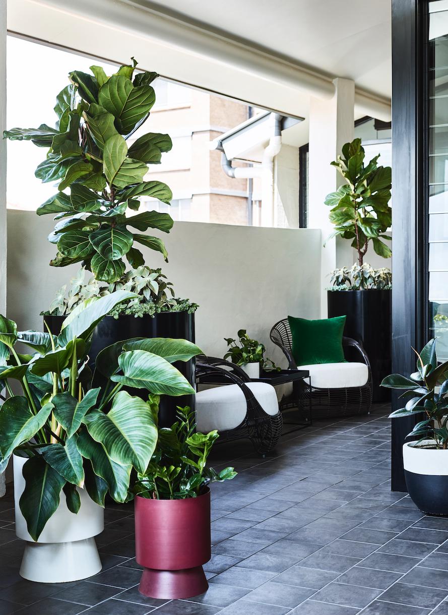 Design: Claire Stevens Interior Design & The Small Garden  Photo: ©TobyScott