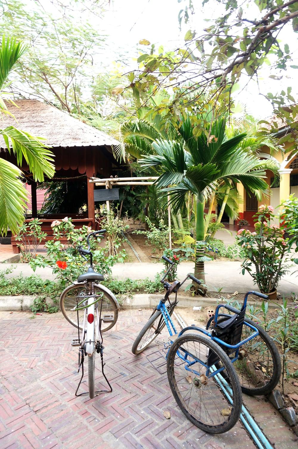 Espanolita_Cambodia_48.jpg