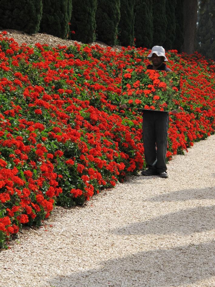 Gardener1.JPG