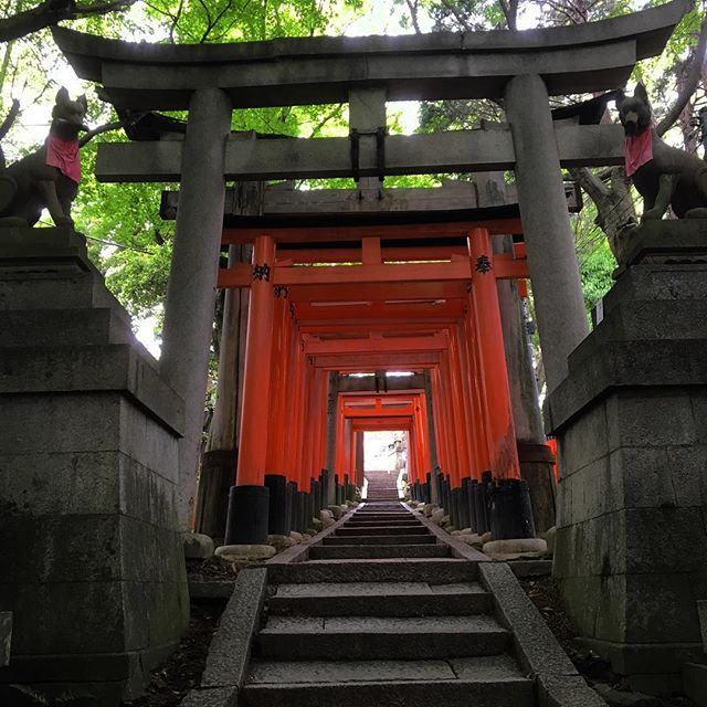 Fushimi Inari-Trisha #fushimiinari #kyoto #japan #travel #wanderlast #endless