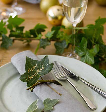 ivy-leaf-426x450_20123.jpg