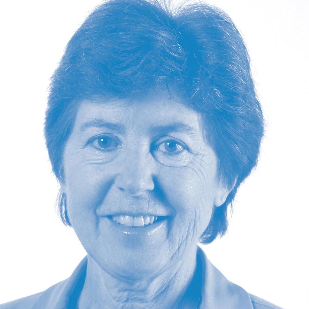 Kathy Riklin, Nationalrätin CVP
