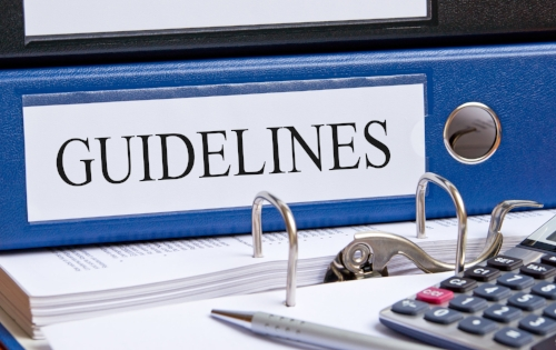 YOUTH FEDERATION GUIDELINES