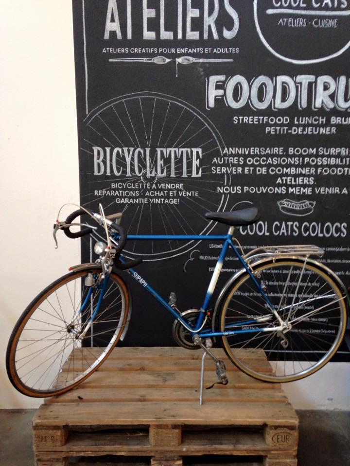 Bike blue 250.jpg