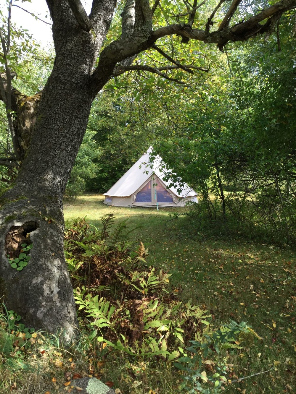 Hub North tent.jpeg