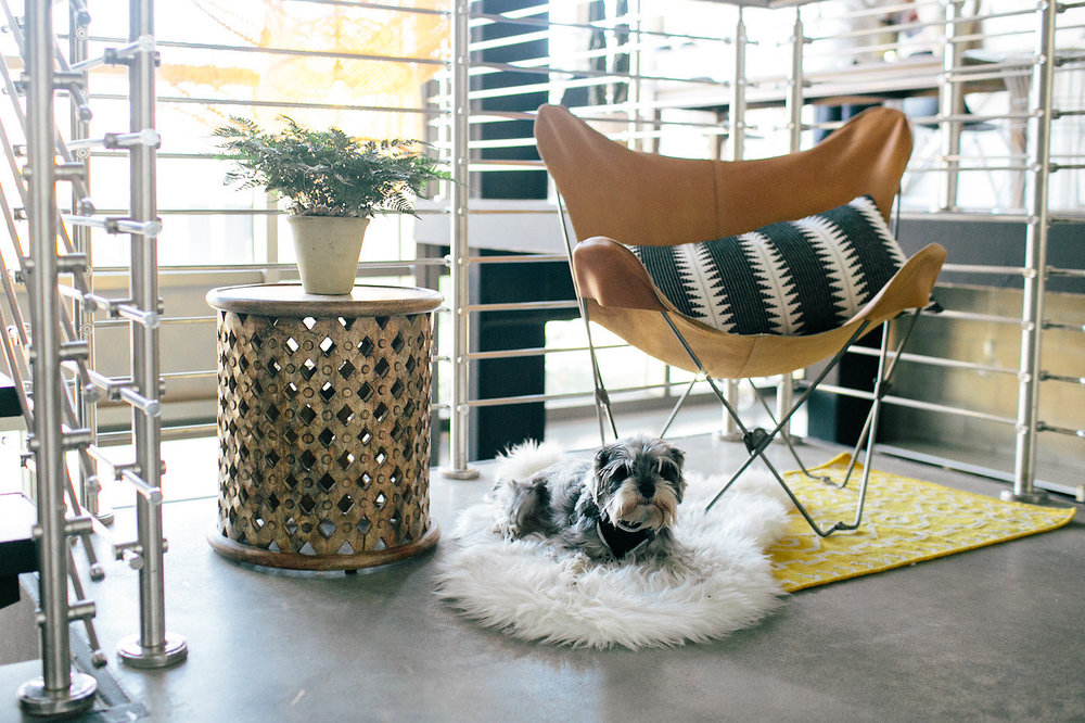 Create & Cultivate Office Tour | Modern Office Space Inspiration | The School of Styling - http://www.theschoolofstyling.com