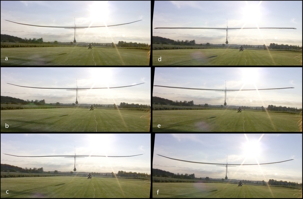 Wing motion during flight at various fractions of one stroke (0, 0.17, 0.41, 0.59, 0.71, 1).