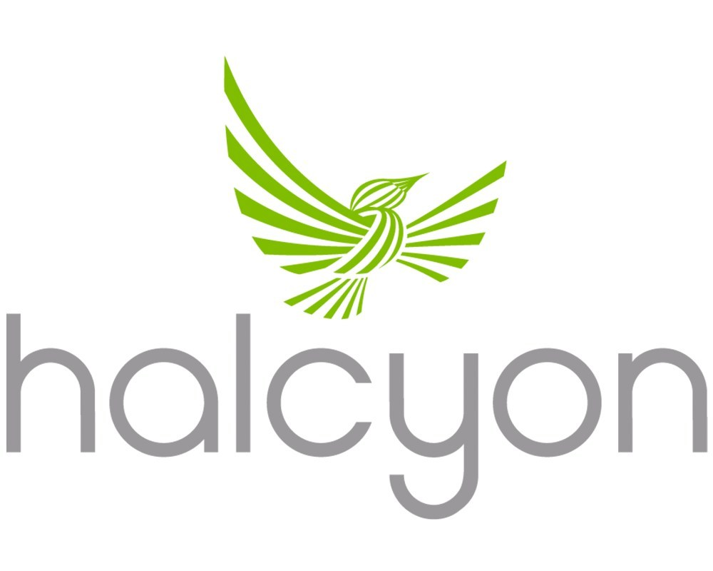 Halcyon Accelerator Fellowship Program